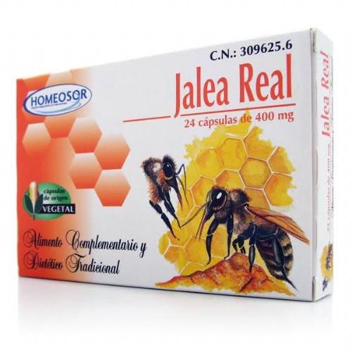 Jalea real royal jelly